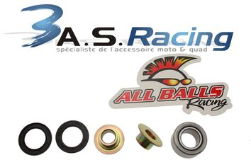 Kit roulements de suspension ALL BALLS TM